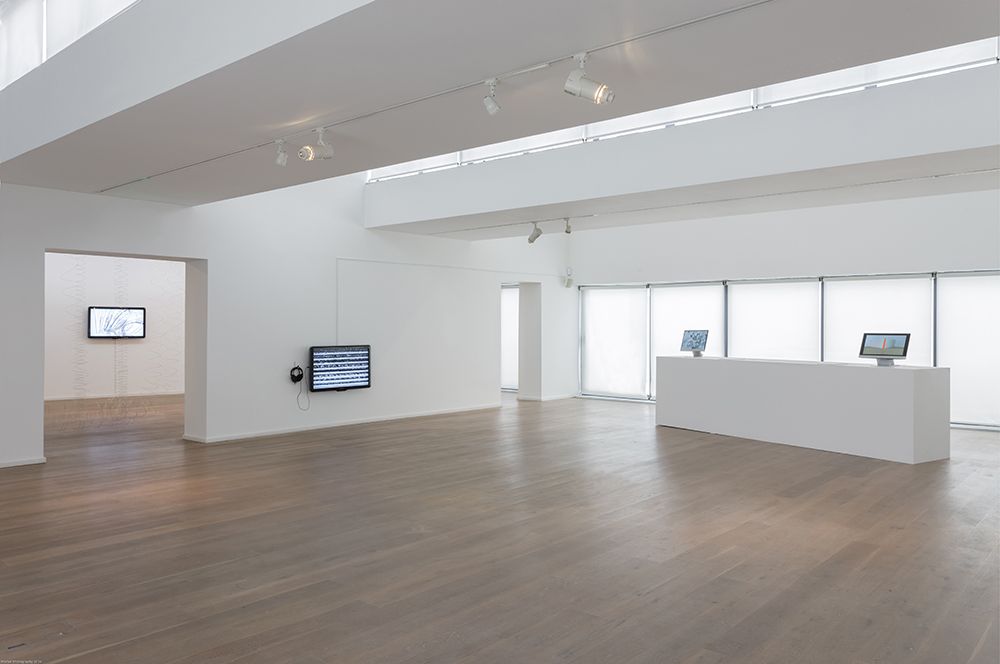 video installation-main galleries-Solstice Art Centre-Everything We See...