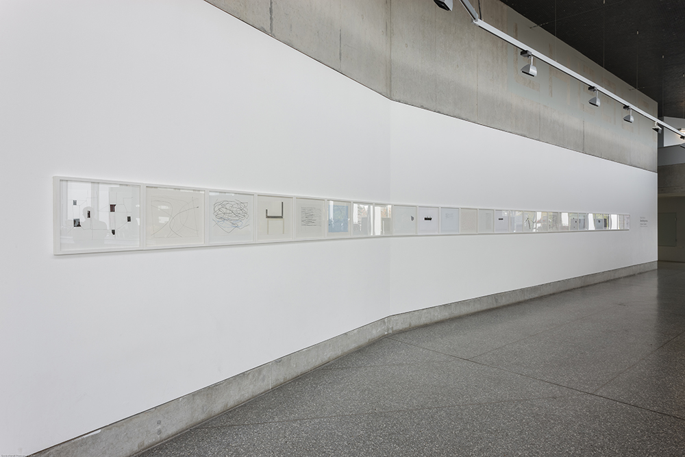 contemporary drawing installation-Solstice Art Centre-Everything We See...