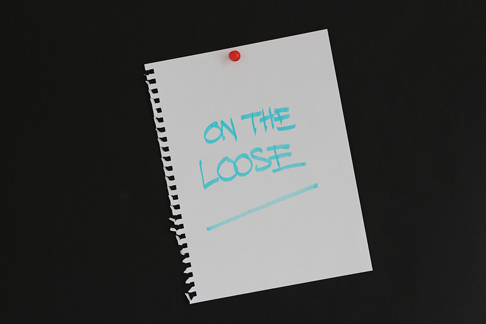 pinned notice-blog title-On The Loose